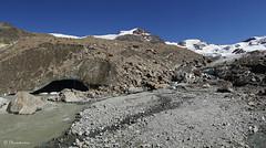 dal rifugio Berni al rifugio Branca (Parco Nazonale dello Stelvio)