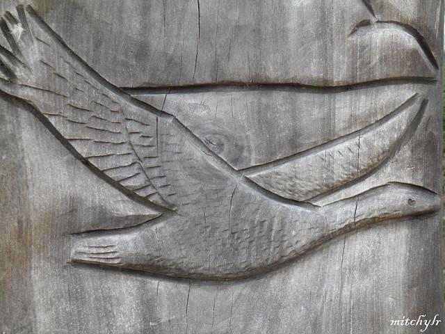 Carved Swan