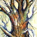 TREE IN WATERCOLOR & INK FOR SUSANNA RICHARDSON by Louise001