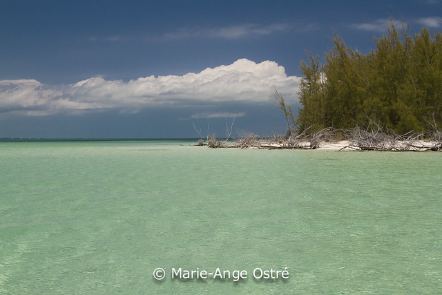 Green Turtle Cay (Abaco)
