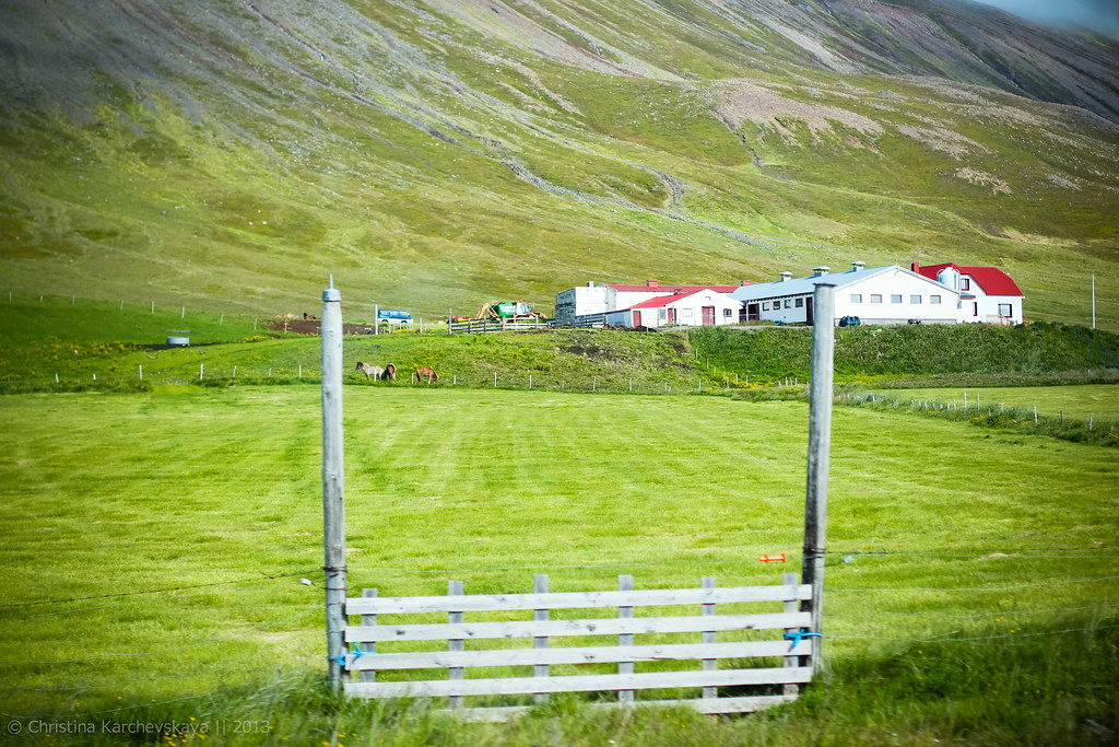 Iceland, Day 5 [29]