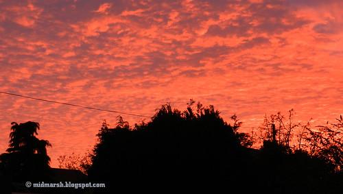Sunset 2054