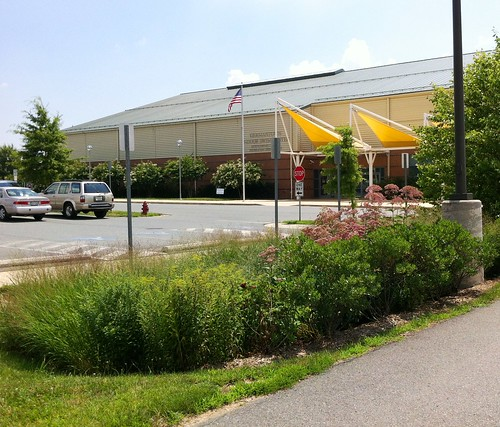Image of a bioretention at the Germantown Swim Center.