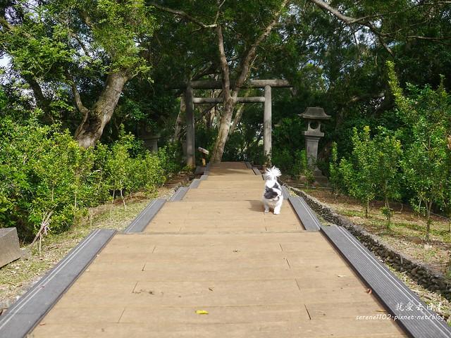 20131206玉里神社-1070860