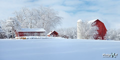 Fresh Winter snow on a historic Michigan Farm by Michigan Nut