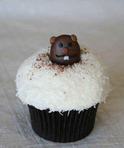 Adorable groundhog cupcake for Groundhog Day and anti-Valentine's Day ...