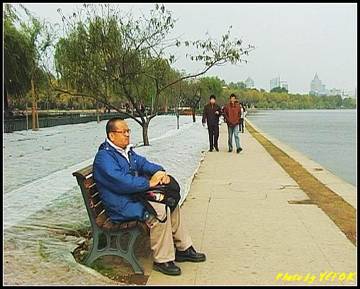 杭州 西湖 (其他景點) - 144 (從白堤上回望北山路方向)