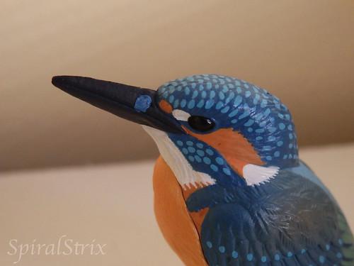 kitan club kingfisher