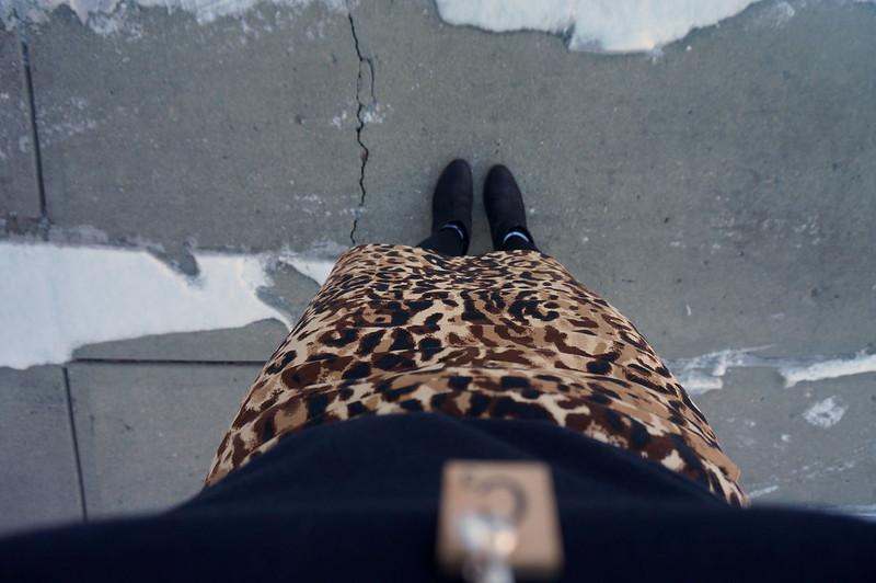 preppy leopard
