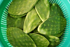leaf, green, produce, food, nopal,