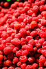 Raspberry Picking by mashapopovic