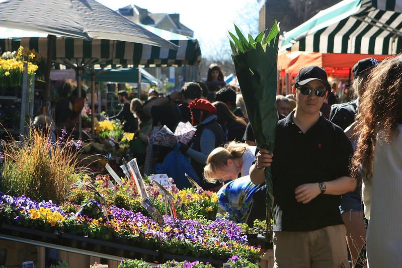 Flower Market 192