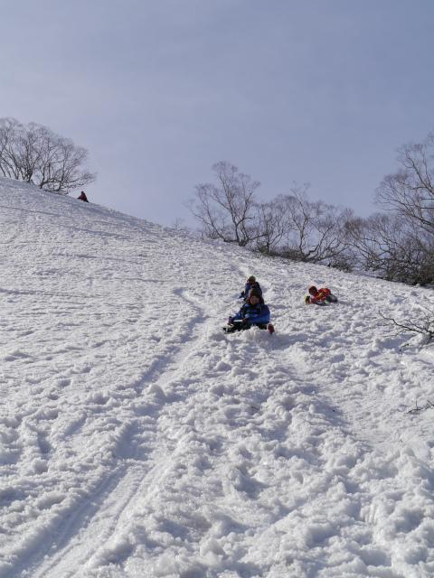 野伏ヶ岳 (146)