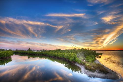 day florida mangrove palmetto manateeriver manateecounty pwpartlycloudy