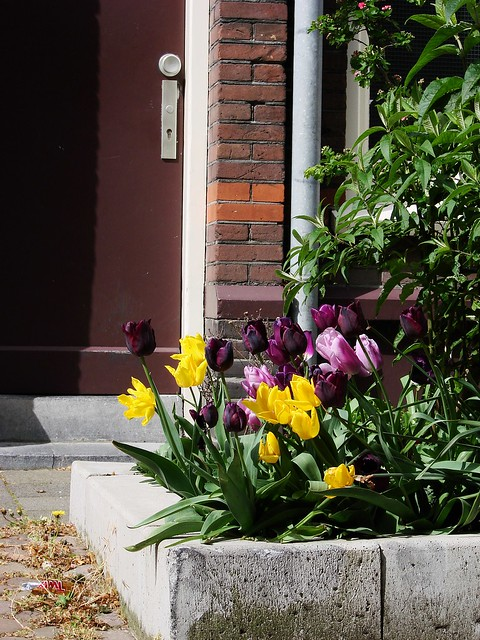 Spring in the Griftpark