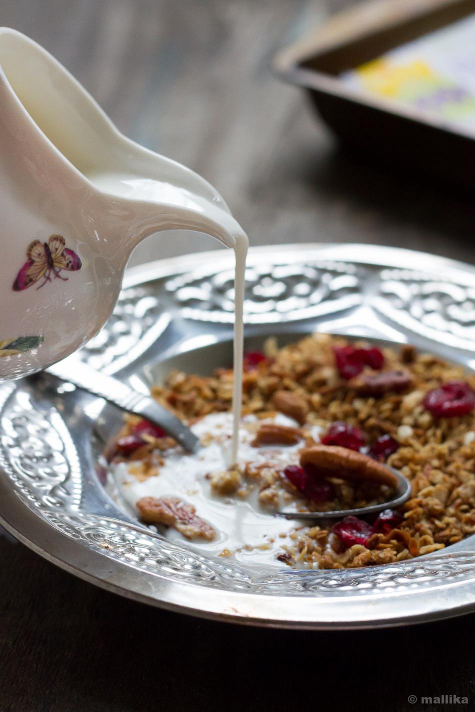 Pecan, Cranberry, Coconut Granola Served