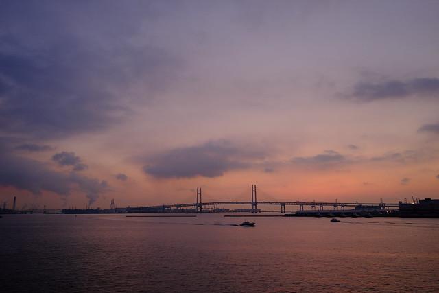 朝活 [機材沼] : 横浜の朝(1)