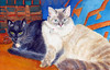 sue_barnum_cats_4in
