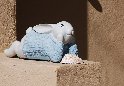 thoughtful rabbit in sweater.jpg