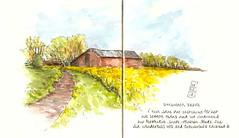 08-05-13a by Anita Davies