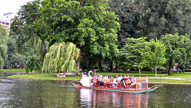 The swan boats of boston