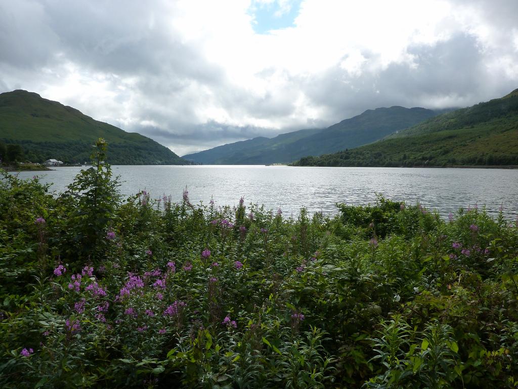 19. Loch Long en un día nublado. Autor, Beth M527