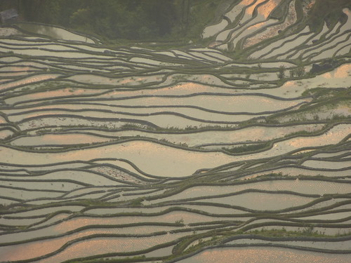 Yunnan13-Yuanyang 24-Bada (58)