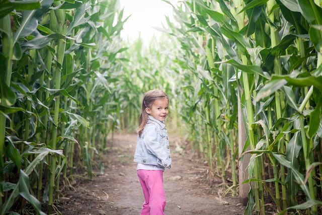 2013-09-14-Corn maze-17.jpg