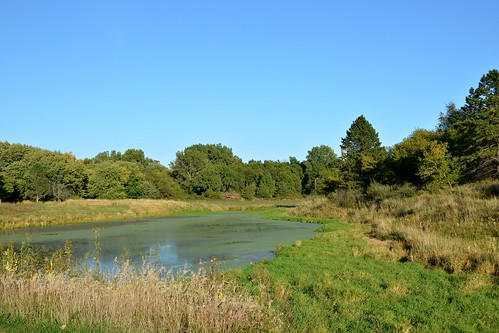 statepark usa lake tree grass pond nikon day bluesky iowa clear algae anita casscounty d7000 ia148