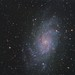M33, La galassia del Triangolo by xamad