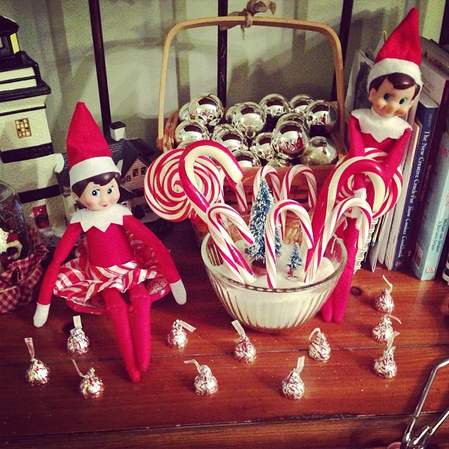 Well, the kids awoke this morning to find that the peppermint Hershey kisses that they had planted grew into candy canes overnight!! What a sweet surprise!