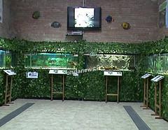 Sala Consilina - acquario didattico
