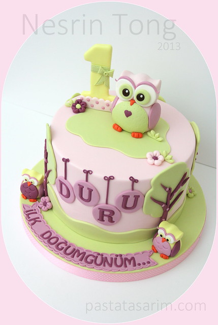 owl first birthday cake duru