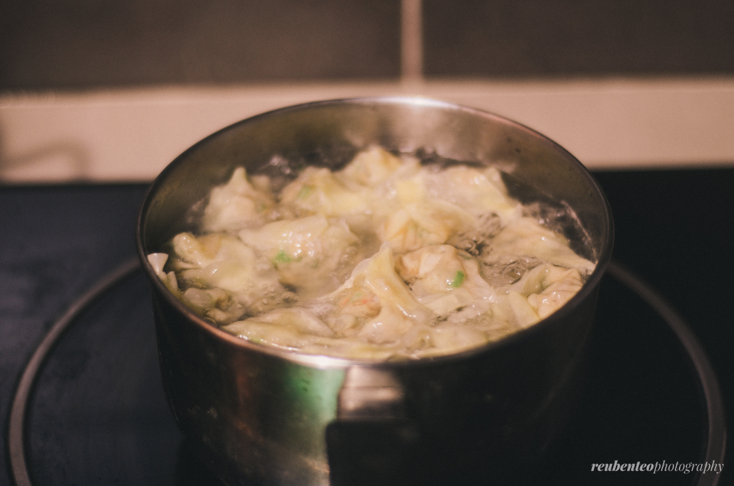 Homemade Wanton (Dumplings)