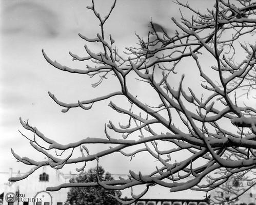 snow ashleyhall conversehall campusscenes