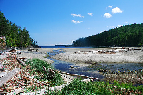 Open Bay, Quadra Island, Discovery Islands, British Columbia, Canada