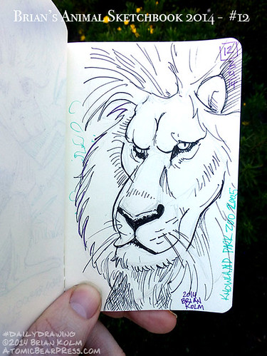 02-21-2014 #dailydrawing #animals lion