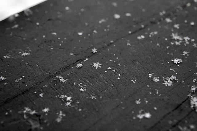 snowflakes & weekend links......
