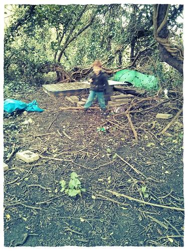 abandoned dens