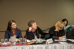 SDWG_March_Yellowknife_2014-9