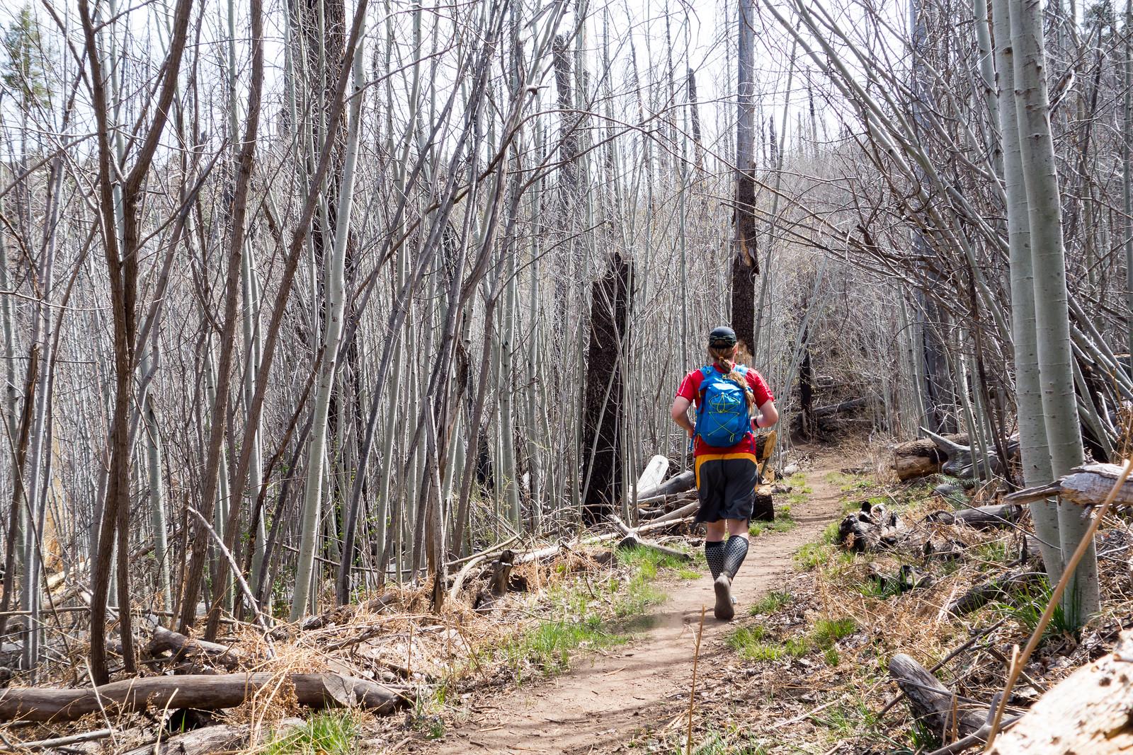 1404 Running on the Aspen Trail