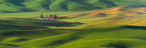 Steptoe Butte Farmhouse