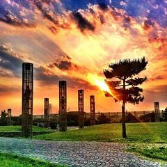 #大黒海づり公園 #park #yokohama