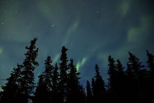 Northern Lights in Denali