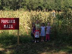 Popcorn Maze