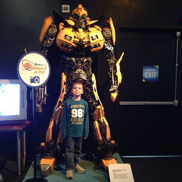 Oh look it's Bumblebee @DiscoveryCube #spookyscience #scienceripleys