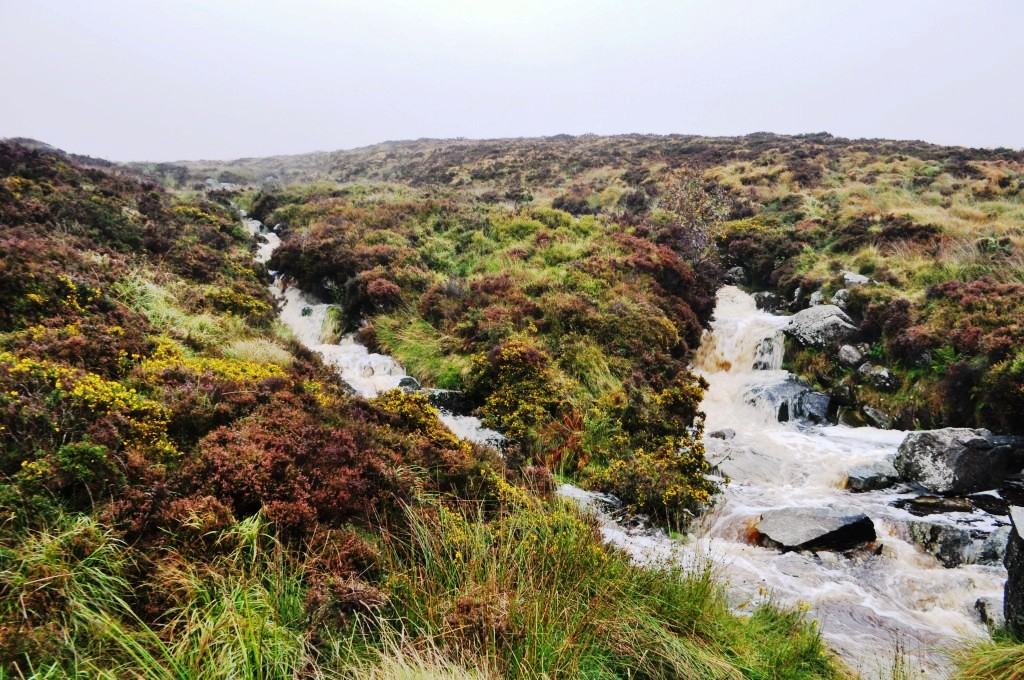 Travel to Ireland: Wild Wicklow Tour, Wicklow Mountains