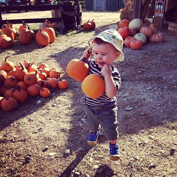 Farmer boy.