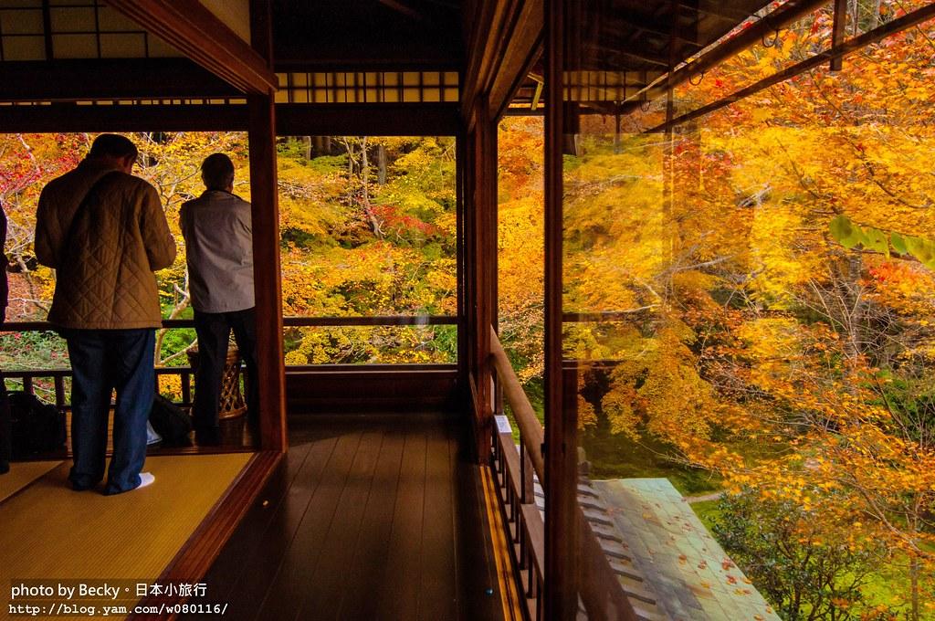 楓京都。瑠璃光院るりこういん