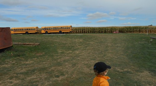 school bus infront of corn maze